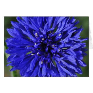 My Blue Heaven IV Card