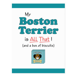 My Boston Terrier is All That! Postcard