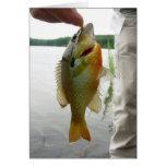 My Boy Caught A Fish Greeting Card