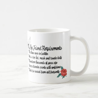 My Boyfriend Requirments Mug