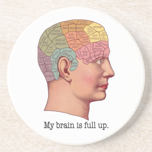 My Brain is Full Up Drink Coasters
