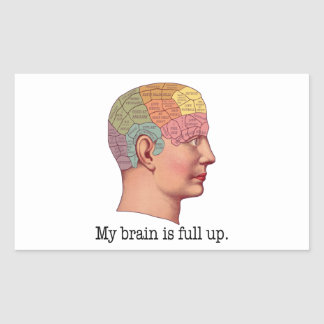 My Brain is Full Up Rectangular Sticker