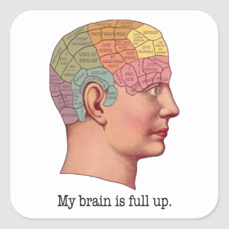 My Brain is Full Up Square Sticker