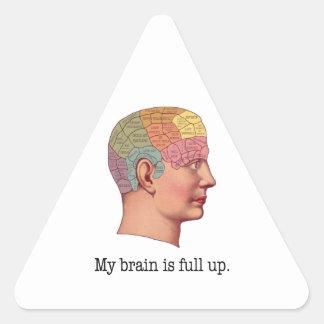 My Brain is Full Up Triangle Sticker