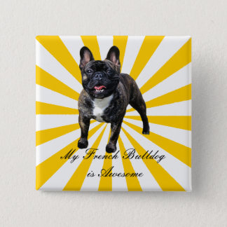 My Brindle French Bulldog is Awesome Pinback Button