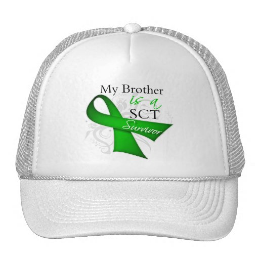 My Brother is a Stem Cell Transplant Survivor Mesh Hats