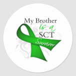 My Brother is a Stem Cell Transplant Survivor Stickers