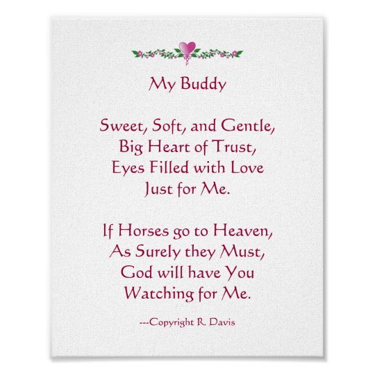 My Buddy - Horse Poster