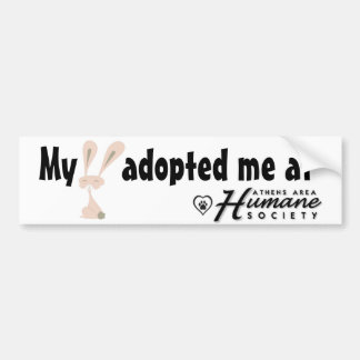 My bunny adopted me at car bumper sticker