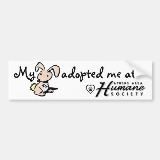 My bunny adopted me bumper sticker