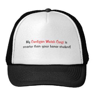 My Cardigan Welsh Corgi is smarter... Hat