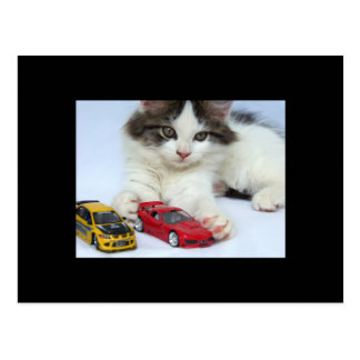 My Cars (cat) ACEO Art Trading Card Postcard