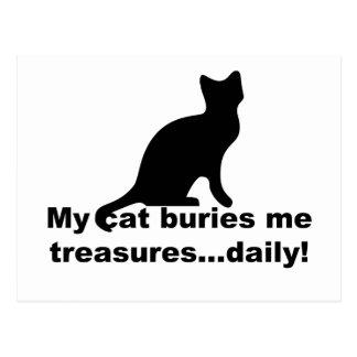My Cat Buries Me Treasures Daily Funny Postcard