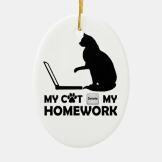My cat deleted my homework ornaments