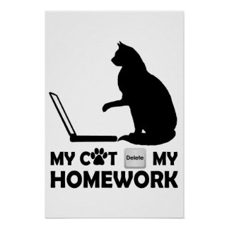 My cat deleted my homework poster