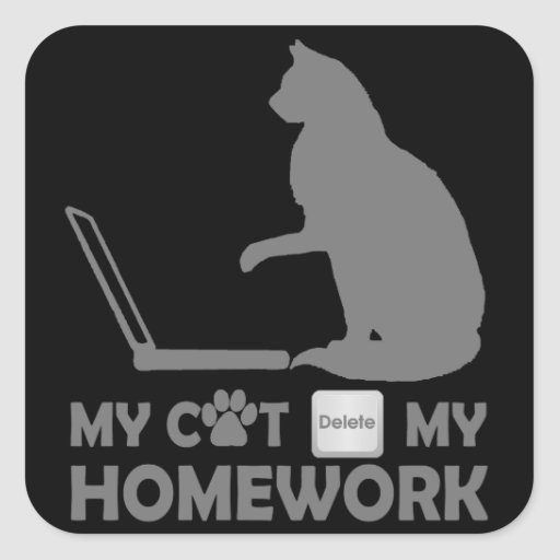 My cat deleted my homework square sticker