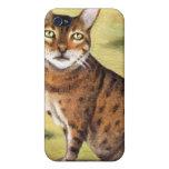 My Cat iPhone 4/4S Cover
