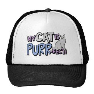 My Cat Is Purr-fect Trucker Hat