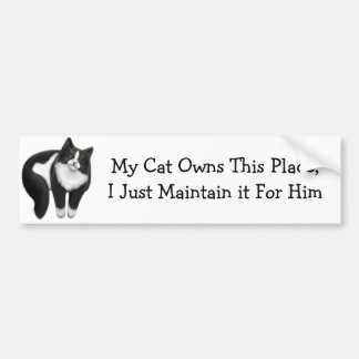 My Cat Owns This Place Bumper Sticker Car Bumper Sticker
