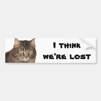 My Cat thinks we're lost Car Bumper Sticker