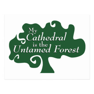 My Cathedral is the Untamed Forest Postcard