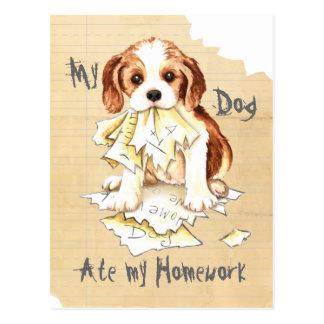 My Cavalier Ate My Homework Postcards