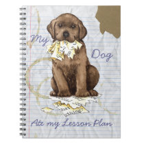My Chocolate Lab Ate my Lesson Plan Notebook