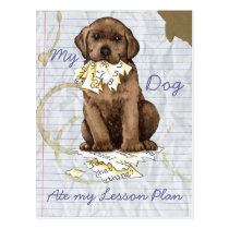 My Chocolate Lab Ate my Lesson Plan Postcard