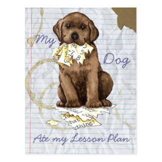 My Chocolate Lab Ate My Lesson Plan Post Card