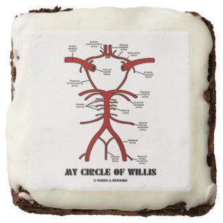 My Circle Of Willis (Arteries Anatomical Humor) Square Brownie