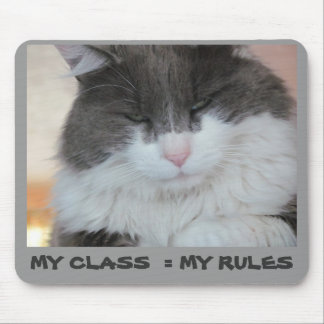 My Class =  My Rules Mouse Pad