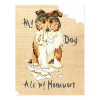My Collie Ate My Homework Postcard