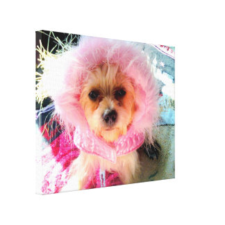 My Color Is Pink Canvas Print