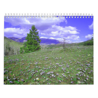 My Colorado Calendar