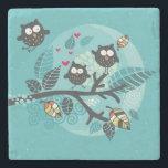 """My crazy owl pet stone coaster<br><div class=""""desc"""">it&#39;s special</div>"""