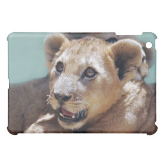 My Cute Lion Face iPad Mini Cases
