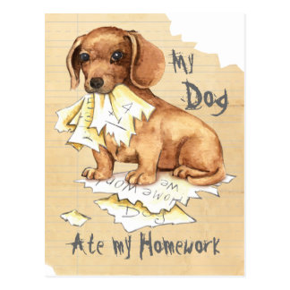My Dachshund Ate My Homework Postcard