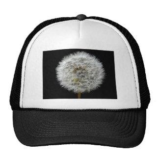 My Dandelion Trucker Hat