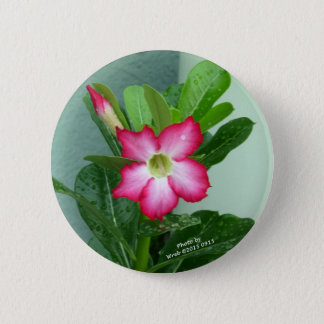 My Desert Rose Button