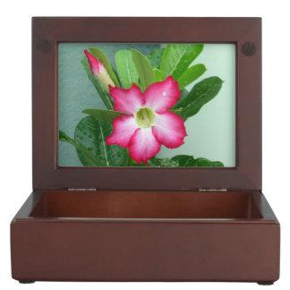 My Dessert Rose Keepsake Box