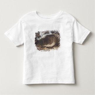 My Destiny, 1857 Shirt