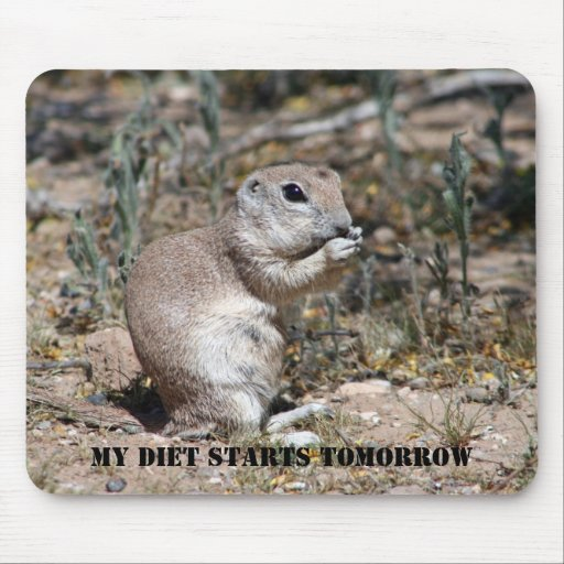 MY DIET STARTS TOMORROW MOUSE PAD