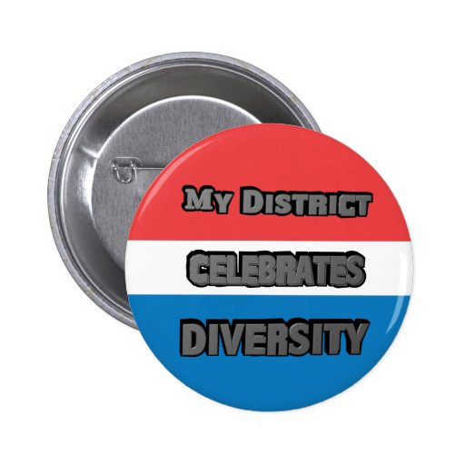 My District Celebrates Diversity Red White Blue Buttons