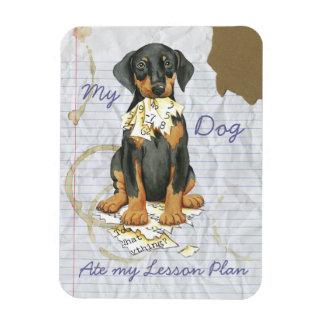 My Doberman Ate My Lesson Plan Rectangular Photo Magnet