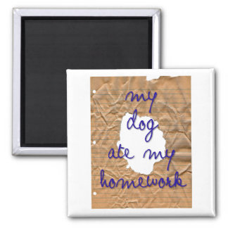 magnet homework