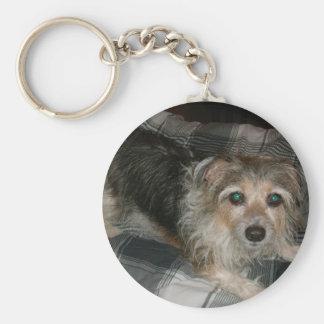 My Dog Basic Round Button Keychain