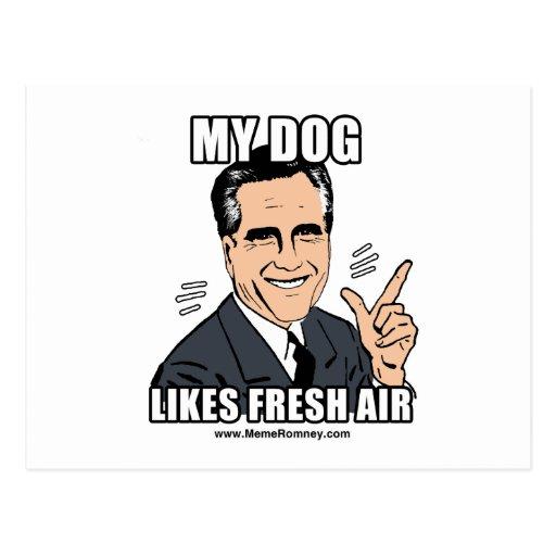 MY DOG LIKES FRESH AIR POSTCARD