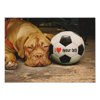 My dog loves soccer and I love my dog!