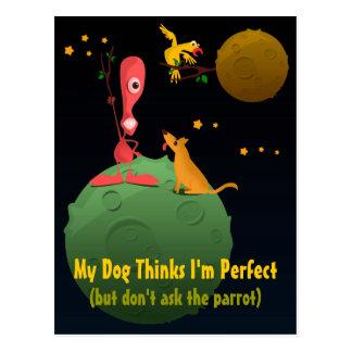 My Dog Thinks I'm Perfect Postcard