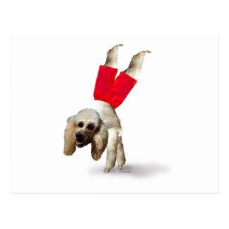 My Dog Wearing Pants Postcard